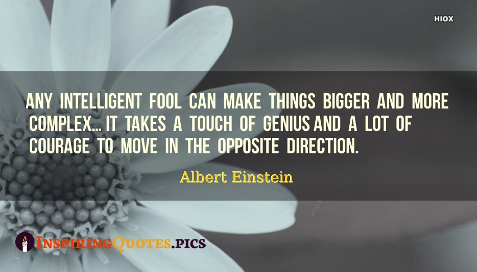 Any Intelligent Fool Can Make Things Bigger And More Complex… It Takes A Touch Of Genius And A Lot Of Courage To Move In The Opposite Direction - Albert Einstein