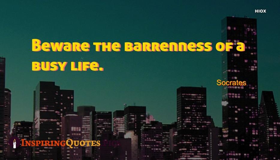 Beware The Barrenness Of A Busy Life - Socrates