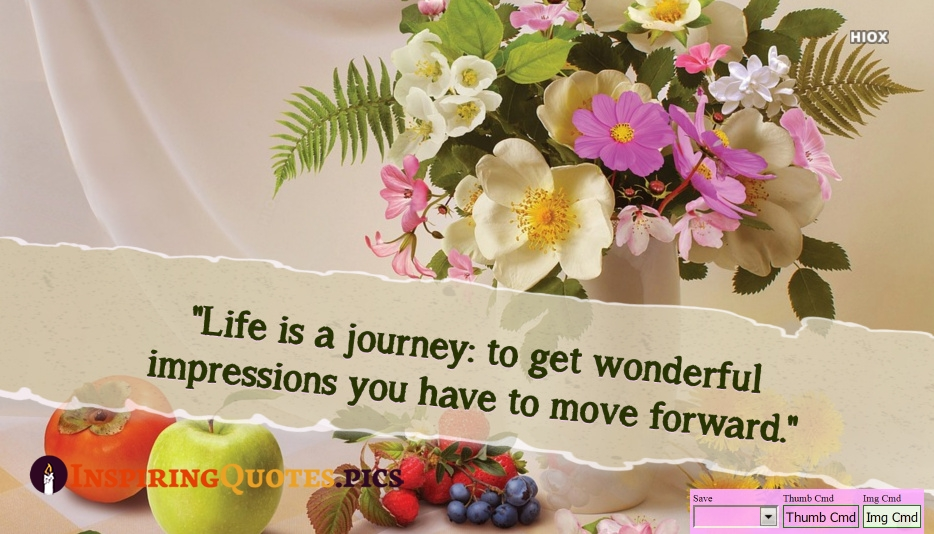 Inspirational Deep Life Quotes | Life is A Journey: To Get Wonderful Impressions You Have To Move Forward