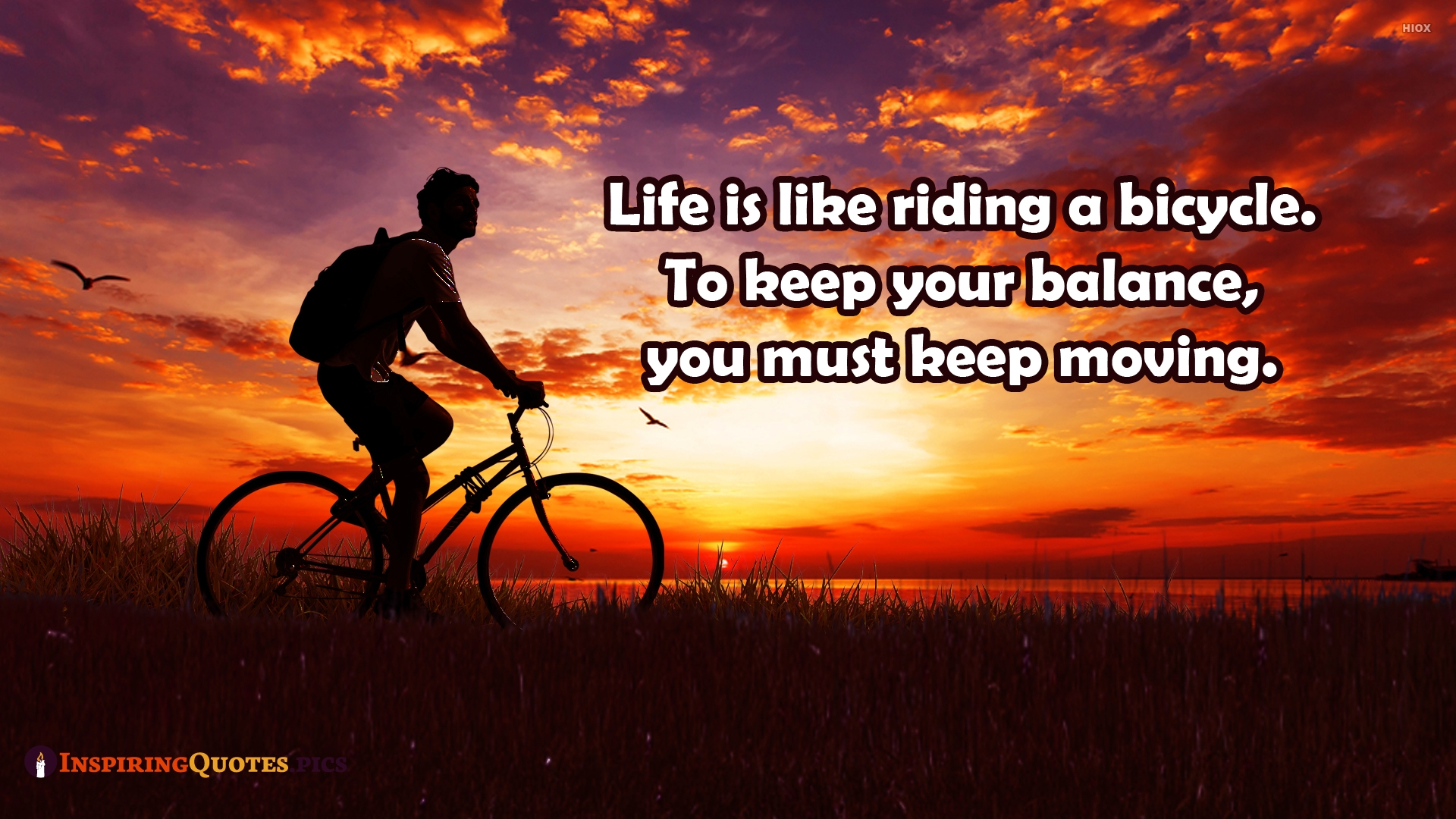 Life is Like Riding A Bicycle. To Keep Your Balance, You Must Keep Moving