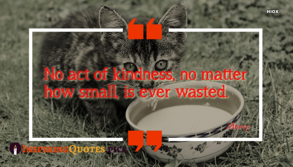 No Act Of Kindness, No Matter How Small, Is Ever Wasted - Aesop