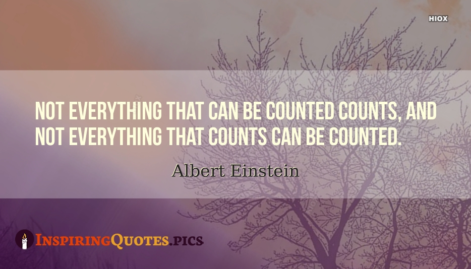 Not Everything That Can Be Counted Counts And Not Everything That Counts Can Be Counted - Albert Einstein