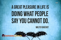 A Great Pleasure In Life Is Doing What People Say You Cannot Do