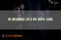 An Unexamined Life Is Not Worth Living