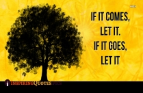 If It Comes, Let It. If It Goes, Let It