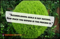 Inspirational Selfie Quotes | Accomplishing Goals Is Not Success