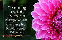 The Meaning I Picked, The One That Changed My Life. Overcome Fear, Behold Wondere