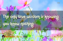 The Only True Wisdom Is Knowing You Know Nothing